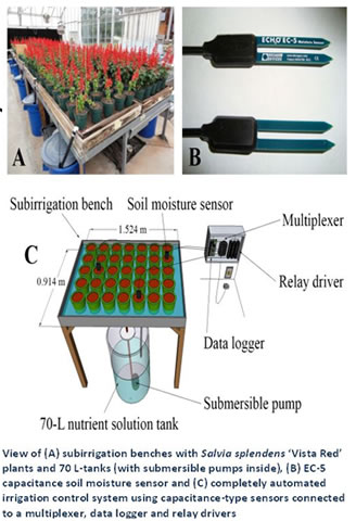 subirrigation diagram